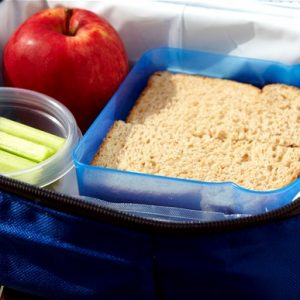 Ekoskola – Packed Lunches Student Survey